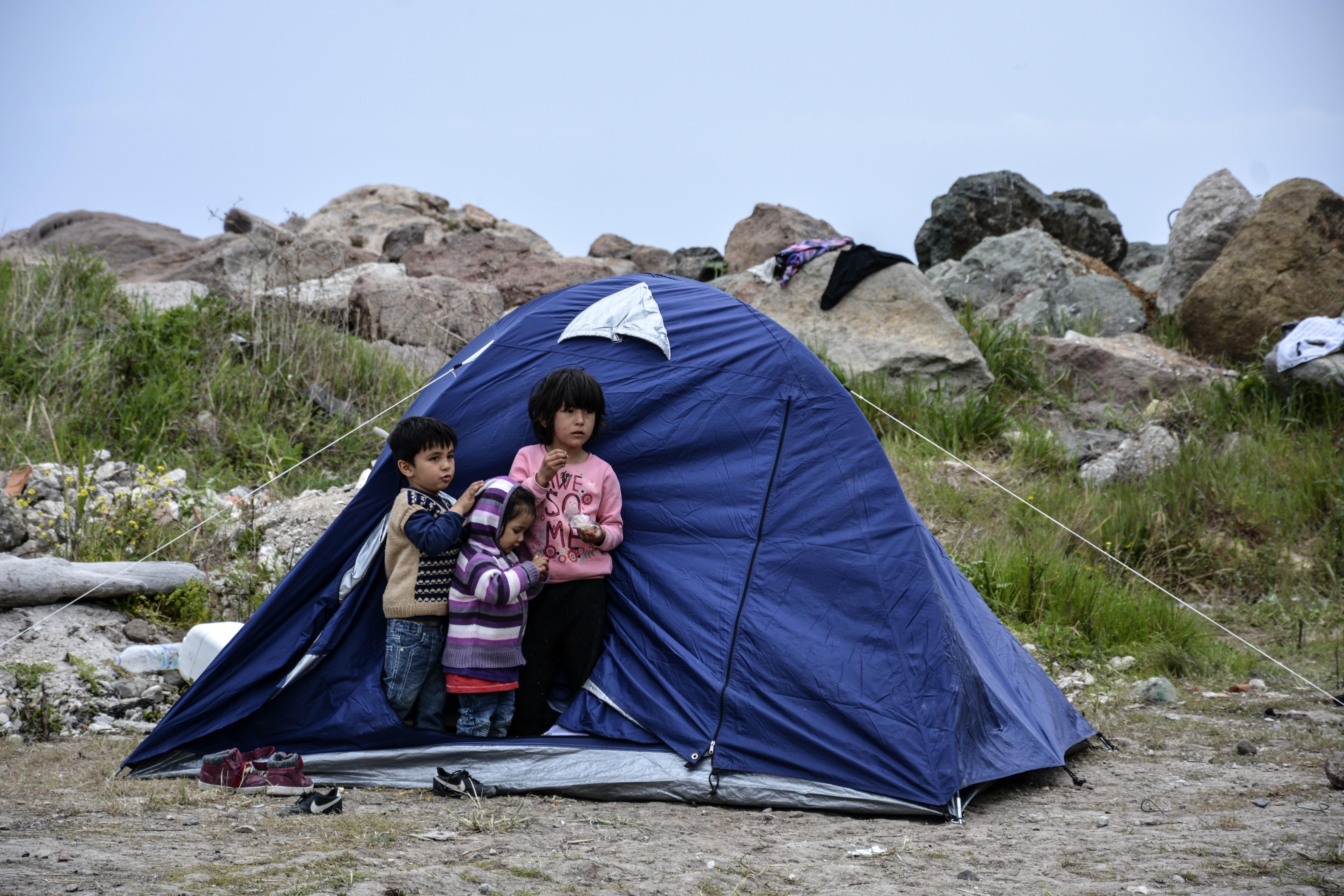 Brukt Telt for 2 3 pers Wildlife Project. til salgs i Oslo
