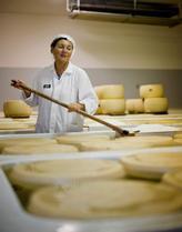 Views: Cristiana Capelli è la daily information manager di Formegiano Regiano, ma mostra come il formaggio dovrebbe essere girato giornalmente per due mesi con un bagno di sale.  Foto: Honkon Sæbø / Finansavisen
