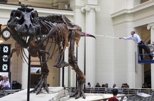 datering av Dinosaur fossiler homofile HIV Dating Sites