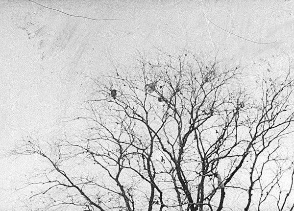 I (02) Bombingen av Victoria terrasse