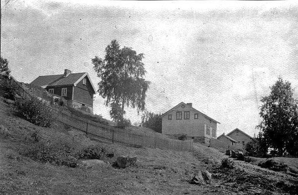 Bjørnholt: