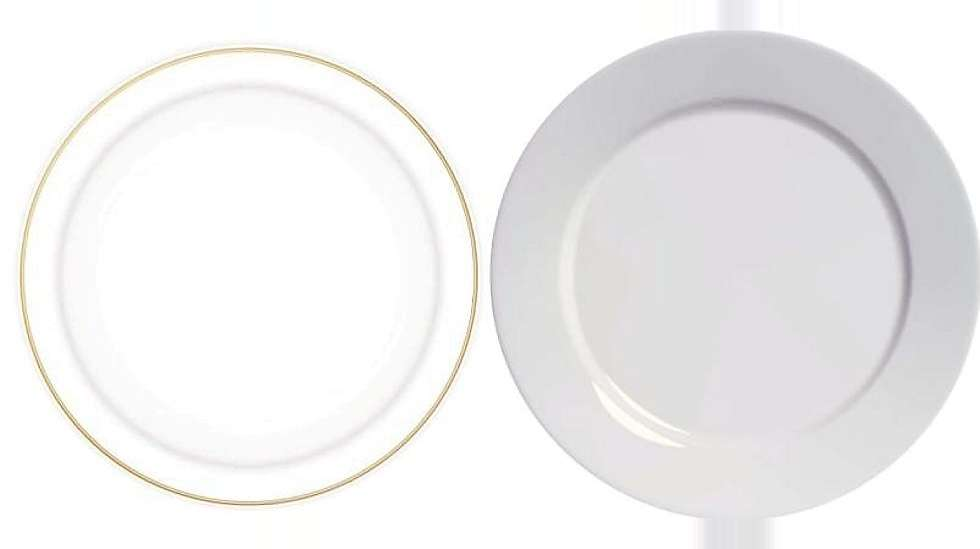 922f09e3 BØR BEHANDLES ULIKT: Vanlig porselen og benporselen med gullkant kan ikke  kjøres på det samme