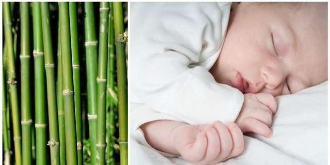 582bda0f Trodde du bambusklær var antibakterielle, naturlige og miljøvennlige? Da er  du blitt lurt. Strengt tatt er det ikke engang bambus.