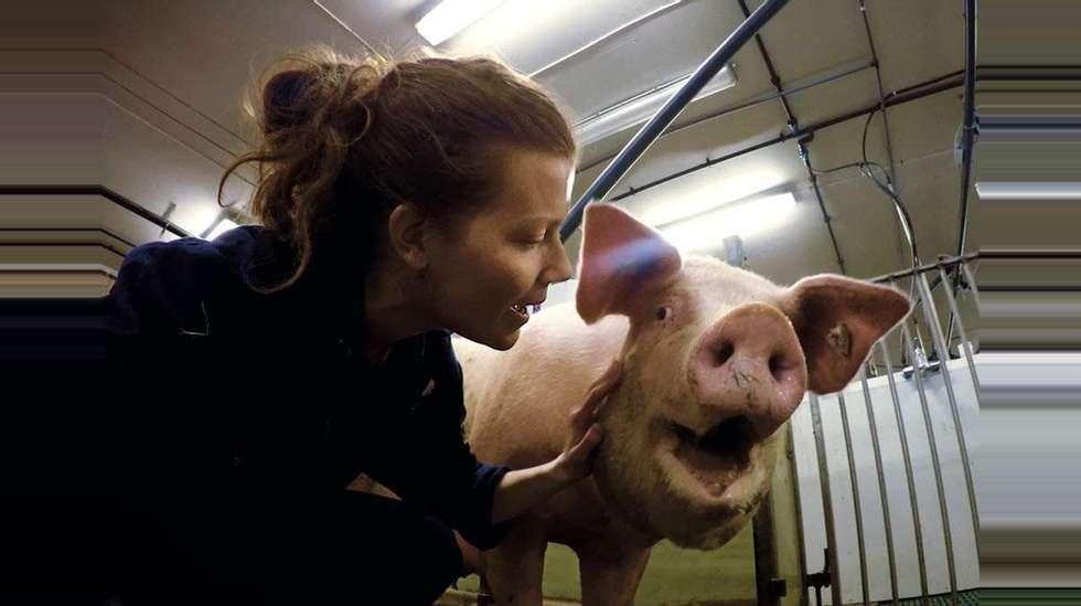 e9a86b4c Slakter Gildes PR-kampanje etter NRK-dokumentar: - En veldig dårlig ...