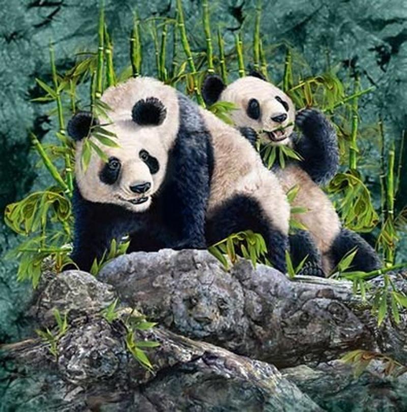Hvor mange pandaer ser du?