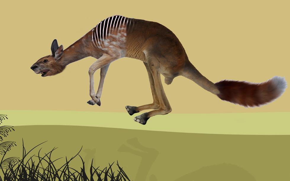 Hvilke dyr består denne uvanlige skapningen av?
