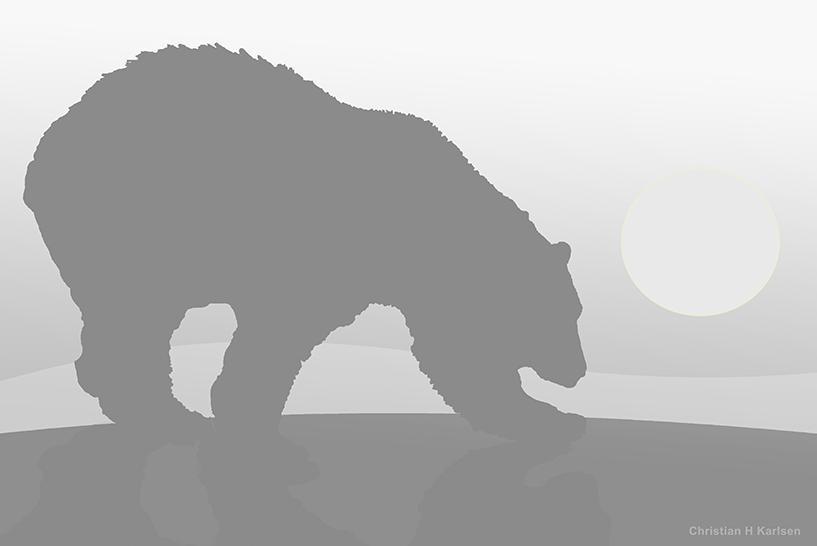 Hvilken farge har bjørnen?