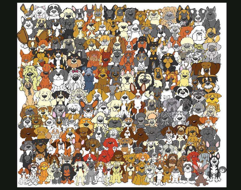 Ser du pandaen på under 10 sekunder?