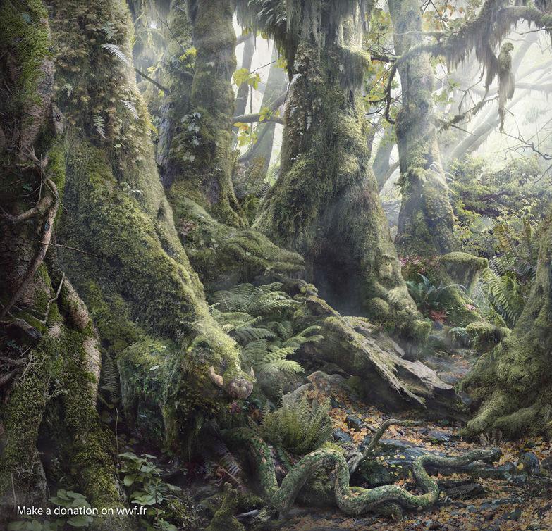 Ser du alle dyrene i regnskogen?