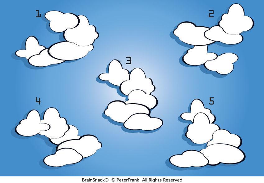 Hvilken sky passer ikke?