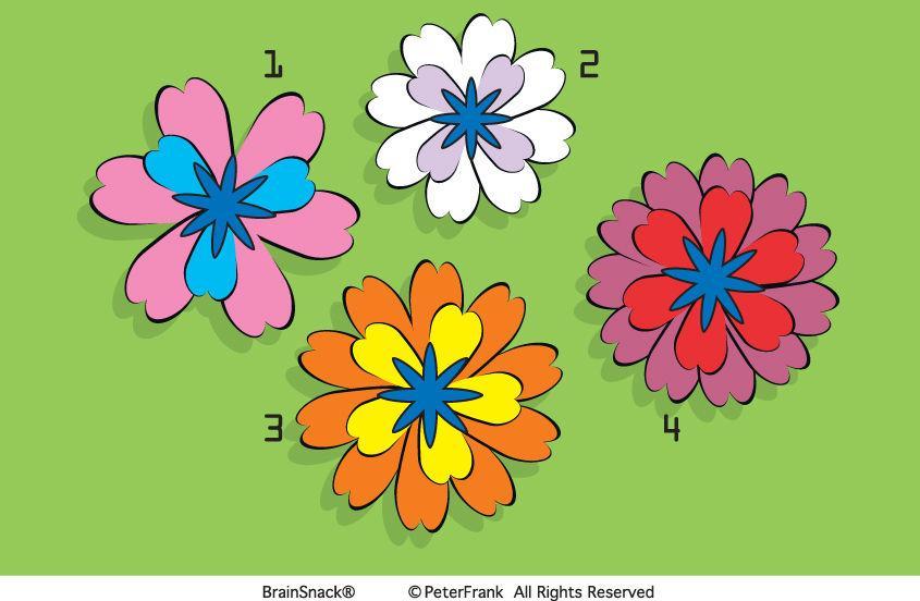 Ser du hvilken blomst som er feil?