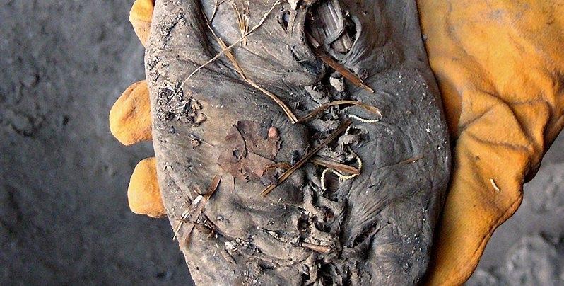Fant 5500 år gammel sko | ABC Nyheter
