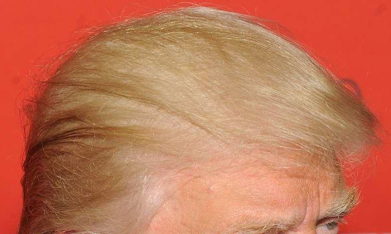 mister mye hår mann