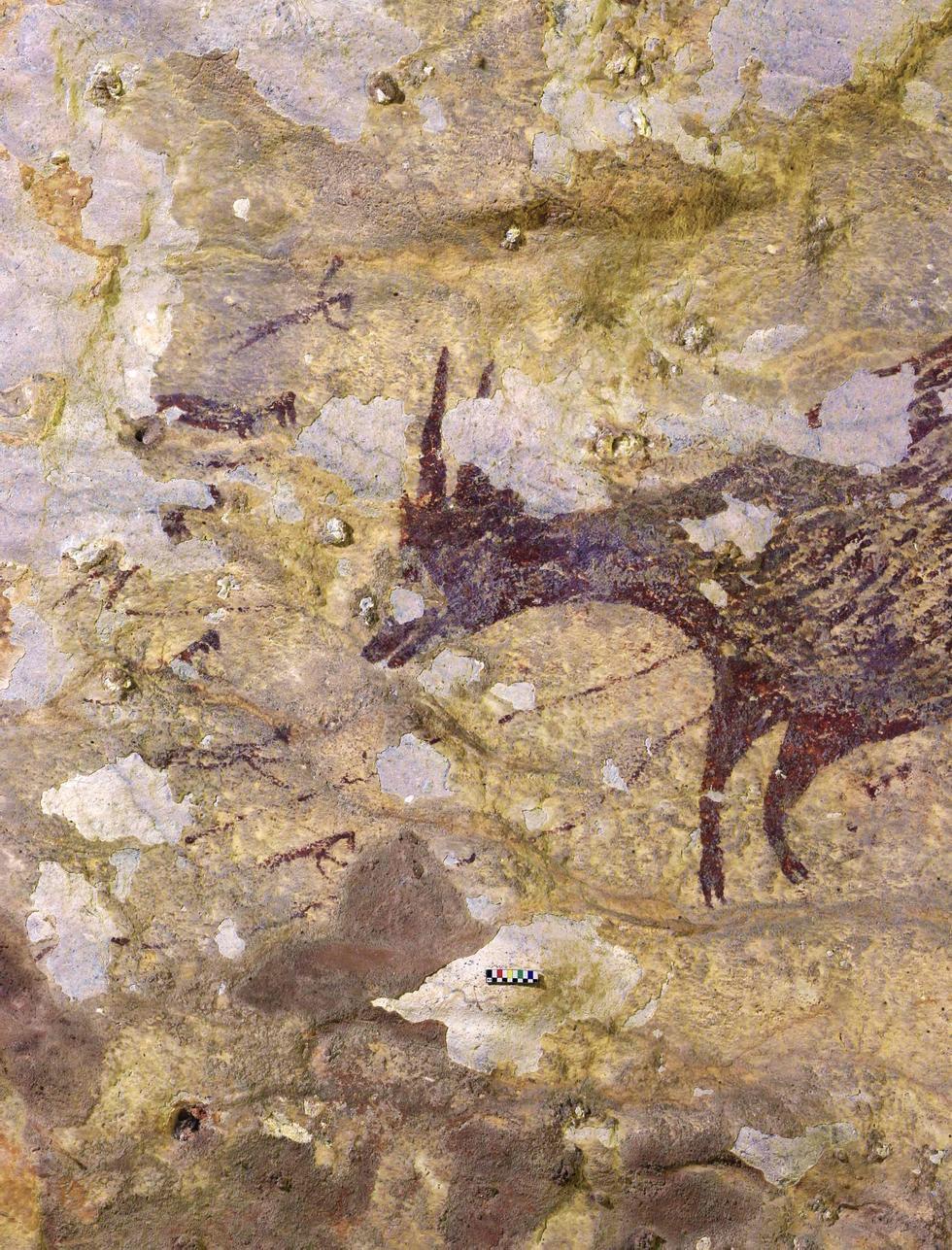 Verdens eldste jegertegninger funnet i hule